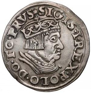 Zygmunt I Stary, Trojak Gdańsk 1536