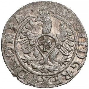 Zygmunt III Waza, Szeląg Bydgoszcz 1613