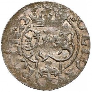 Zygmunt III Waza, Szeląg Bydgoszcz 1623 - piękny