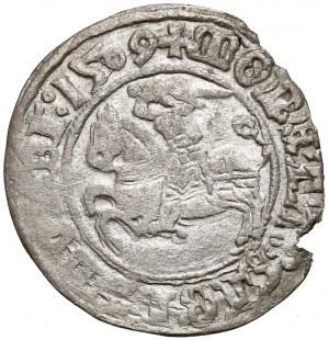 Zygmunt I Stary, Półgrosz Wilno 1509 - błąd MGANI