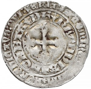 Niderlandy, Wilhelm V (1354-1389) Podwójny grosz