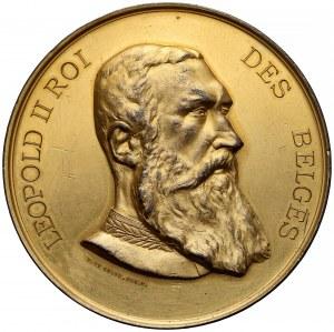Belgia, Leopold II Roi, Medal Międzynarodowy Konkurs Europejskiego Środowiska Naukowego