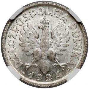 Kobieta i kłosy 1 złoty 1924 - destrukt - NGC MS62