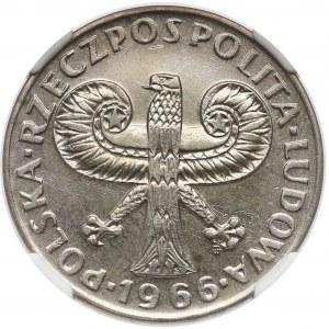 10 złotych 1966 Mała Kolumna - NGC MS64