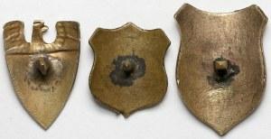 Zespół 3 gwoździ sztandarowych