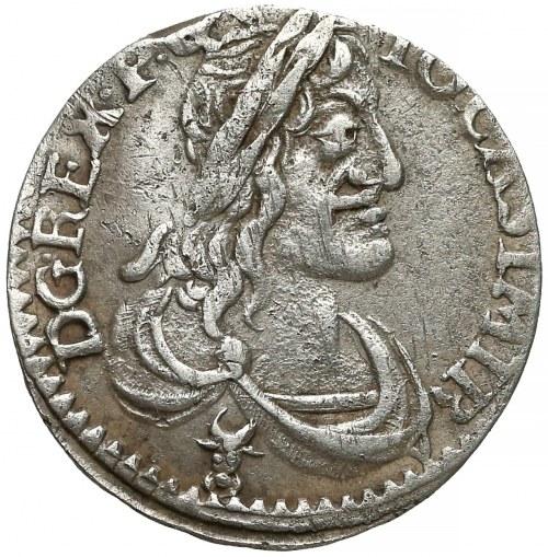 Jan II Kazimierz, Szóstak Wschowa 1650 - wąski portret - rzadki