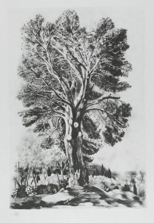 MOJŻESZ KISLING (1891-1953), Drzewo