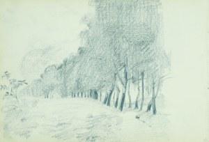 Włodzimierz TETMAJER (1861 - 1923), Pejzaż z drzewami [Drzewa nad strumieniem], [1907]