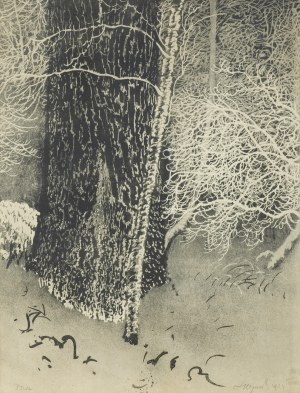 Wyczółkowski Leon, SĘDZIELINA, 1924