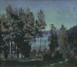 Żukowski Stanisław, NOC NAD JEZIOREM, 1919