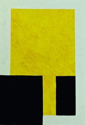 Żółte lustro - Michał Jędrczak