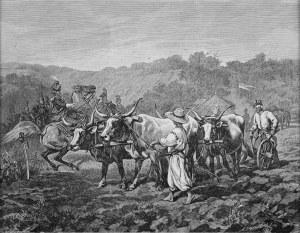 Juliusz KOSSAK (1824-1899), Mohort orze ziemię, w którą wbita jest szabla, [1882]