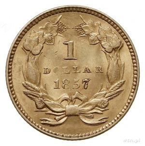 1 dolar 1857, Filadelfia, złoto 1.67 g, Fr. 94, pięknie...