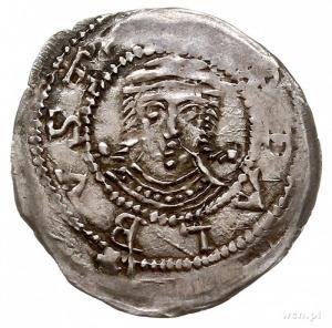 denar z lat 1239-1249, mennica Gniezno, Aw: Rycerz z mi...