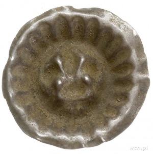 Dymin, brakteat XIII-XIV w., Lilia heraldyczna, promien...