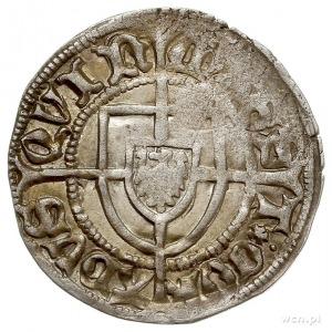 Konrad V von Erlichshausen 1441-1449, szeląg, Aw: Tarcz...
