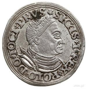 trojak 1532, Toruń, Iger T.32.1.a (R4), T. 18, na awers...