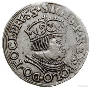 trojak 1536, Gdańsk, typ popiersia jak w roczniku 1535 ...