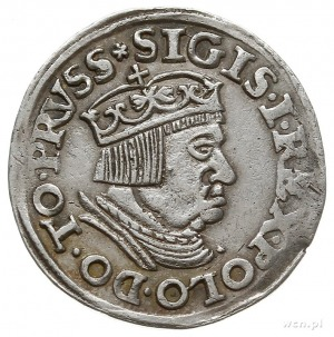 trojak 1537, Gdańsk, korona królewska z krzyżykiem i ko...