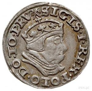 trojak 1540, Gdańsk, Iger G.40.1.c/f (R1), bardzo ładny