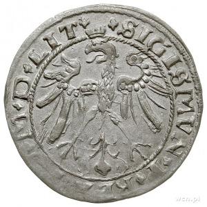 grosz na stopę litewską 1536, Wilno, odmiana bez litery...