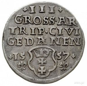 trojak 1557, Gdańsk, popiersie króla bez obwódek i lili...