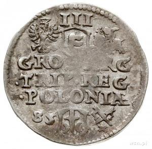 trojak 1585, Poznań, Aw: Bardzo duża głowa króla przery...