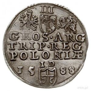 trojak 1588, Olkusz, na awersie duża głowa króla, Iger ...