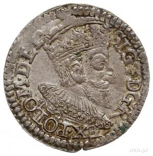 trojak 1593, Olkusz, znak mennicy pod herbem Lewart, Ig...