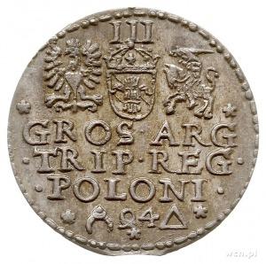 trojak 1594, Malbork, odmiana z otwartym pierścieniem, ...