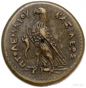 Egipt, Ptolemeusz III Euergetes 246-221 pne, brąz AE-41...