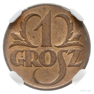 1 grosz 1923, Kings Norton, Parchimowicz 101.a, moneta ...