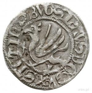 szeląg 1492, Dąbie, 1.15 g, Dbg-P. 380, rzadki