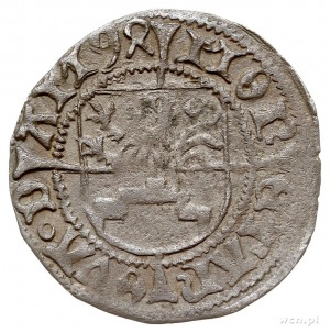 szeląg 1494, Dąbie, 1.12 g, Dbg-P. 382, rzadki