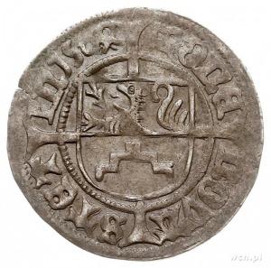 szeląg 1504, Szczecin, 1.30 g, Dbg-P. 393, rzadki