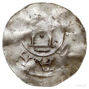 zestaw denarów kolońskich typu S-COLONIA (2 sztuki) i s...