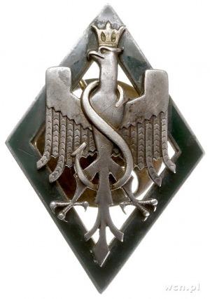 odznaka pamiątkowa 5 Dywizji Strzelców Syberyjskich, Or...