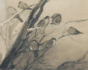 Zofia STANKIEWICZ (1862-1955), Wróble