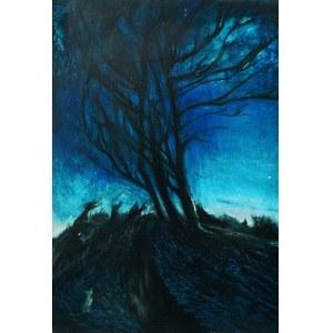 Katarzyna Tchórz, Into the Night/Landscape of longing, 2017