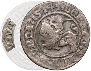 Zygmunt I Stary, Półgrosz Wilno 1514 - błąd LIVTVANIE - b. rzadki