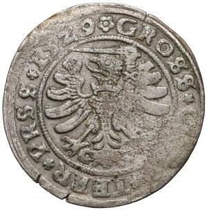 Zygmunt I Stary, Grosz Toruń 1529 - błąd PRSS - RZADKI