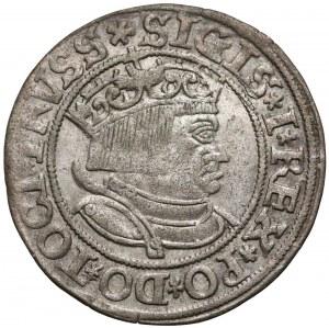 Zygmunt I Stary, Grosz Toruń 1534 - PRVSS