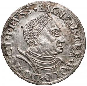 Zygmunt I Stary, Trojak Toruń 1534 - bardzo rzadki