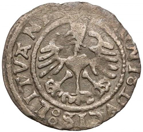 Zygmunt I Stary, Półgrosz Wilno 1529-V - rzadki