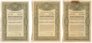 5% Poż. Krótkoterminowa 1920, Obligacje 100-1.000 mkp (3szt)