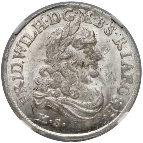 Prusy-Brandenburgia, Fryderyk Wilhelm, Szóstak Królewiec 1682 HS - piękny
