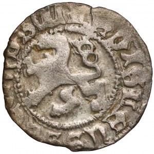Czechy, Władysław II Jagiellończyk (1490-1516), Denar jednostronny