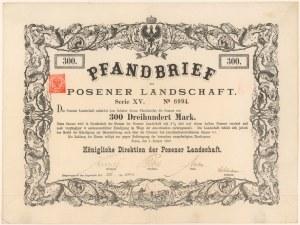 Poznań, Königliche Direktion der Posener Landschaft, List zastawny na 300 mk 1888
