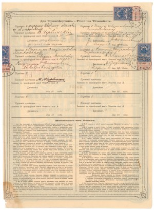 Towarzystwo Handlu Towarami Aptecznymi w Kijowie, 250 rubli 1882