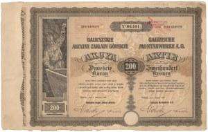 Sierszańskie Zakłady Górnicze, 200 koron 1907
